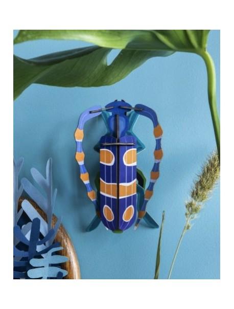 Rosalia Beetle