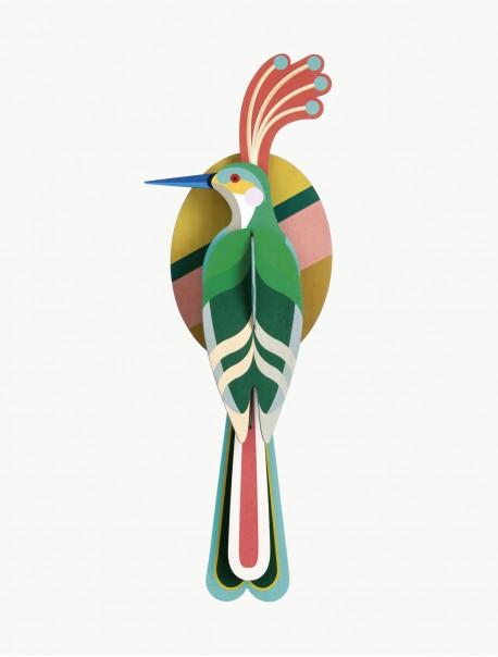 Paradise Bird Nias