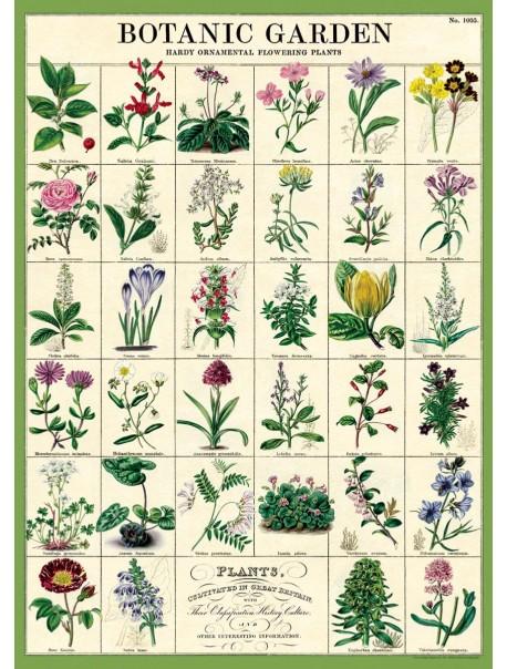 Affiche Jardin Botanique