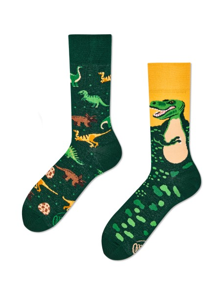 Chaussettes The Dinosaurs
